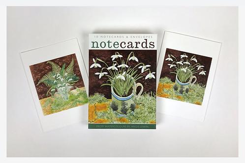 Snowdrops & Lichen and Snowdrops & Ferns Notecards