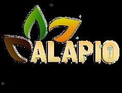 ALAPIO_SQUARE_LOGO1.png