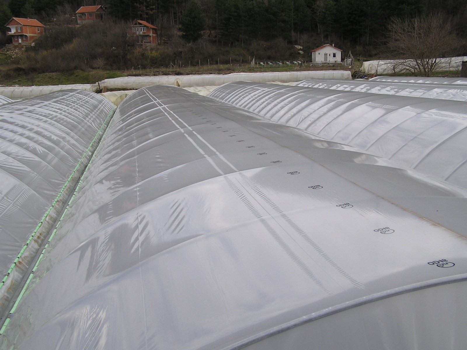 SOLUTIONS FOR GREENHOUSE FILMS