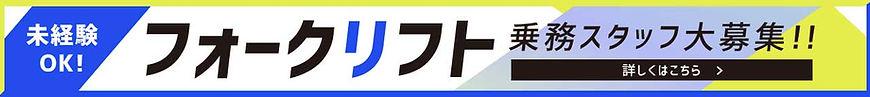sansta_banner.jpg