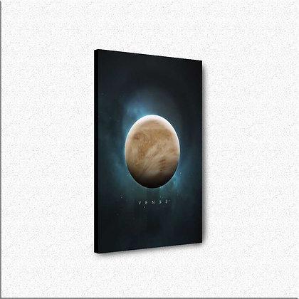 Planeta Venera