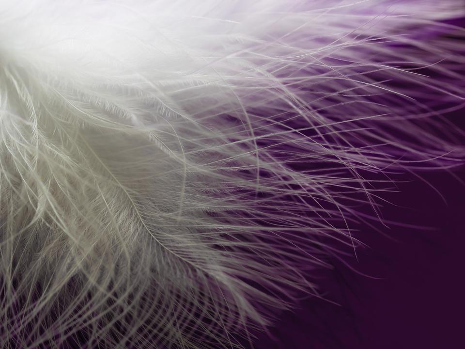 Soul Retrieval: Shamanic Healing Three