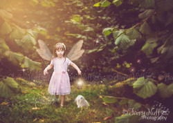 Fairy and friend