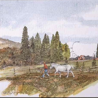 Lee Coll Stables the Valley Series.jpg