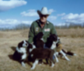 Bill with Boots and her border collie pu