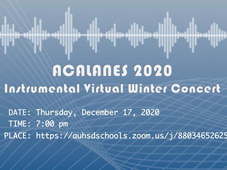 Instrumental Virtual Winter Concert
