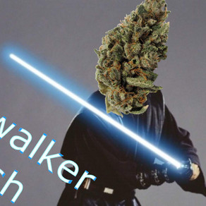 Im Skywalker Kush, Im Here to Rescue You