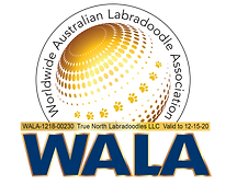 True North WALA Logo-1218-00230.png