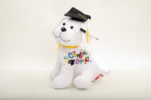 Graduation Puppy Autograph Gift