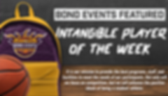 SA of Week Web header.png