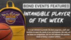 SA of Week Web header.png
