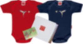 geschenk-zwillinge-kolibri-gr.jpg