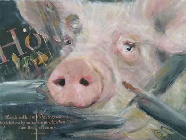 Kollage im Kleinformat, 40 x 30 cm, moderne Kunst oder politische Kunst für den Tierschutz! Ein Schwein ist mindestens so niedlich wie Hund oder Katz. Habt Ihr mal gesehen, wie das Grillfleisch gehalte wird? Eine Sünde. Sin.