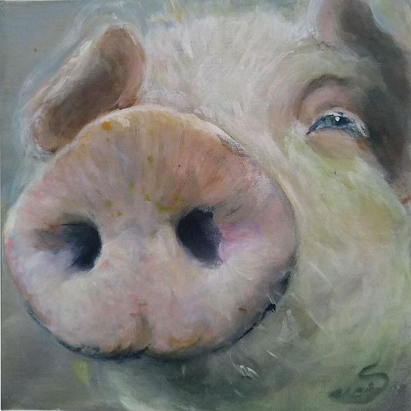 kunst hamburg, glück, glücksschwein, schwein, pig, schweinebild