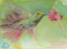 kunjstkarten-kolibri.jpg