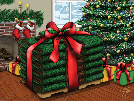Give your Lawn a Gift this Season