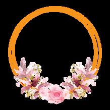 Logo nalhua photographie