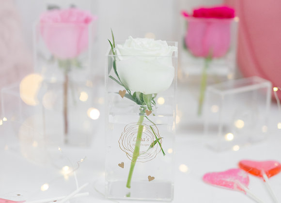 Petite Love - Single Rose in Crystal Clear Box