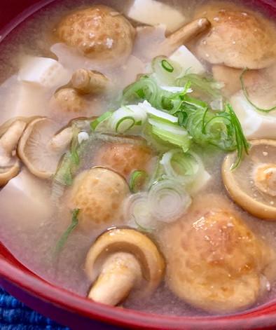 Soupe de miso traditionnelle avec champignons Nameko et tofu soyeux