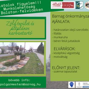 Zöld terület és általános karbantartó
