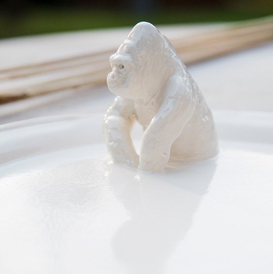 Porcelaine Plateau