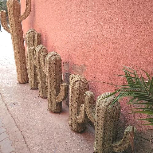 Cactus en Osier