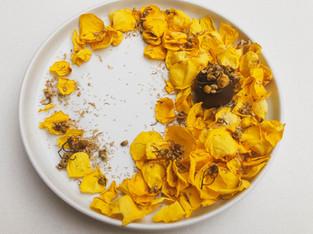"PLANTFEED// SUN POTION FEATURE // "" Orange, cacao, reishi & CBD infused trufles.""//by Kelly Mason"