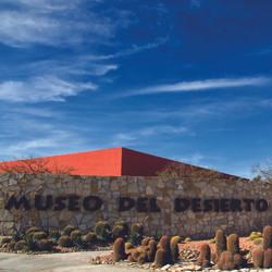 Museo del Desierto (MUDE)