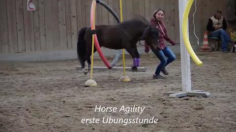 Start Horse Agility auf der White Horse Ranch