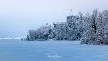 Schwanau im eisigen Winterzauber_Z502115