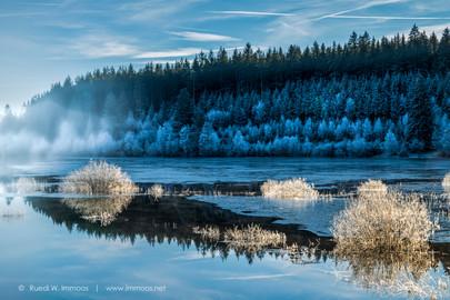 Schluchsee-eisiger-Wintertag-Nebel-Raure