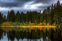 Eisweiher-Titisee-Herbstfarben-dunkle-Wo