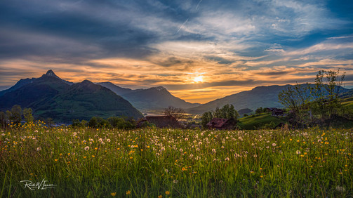 Schwyz Obdorf Sonnenuntergang Lichtlein in der Wiese