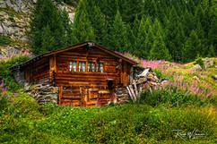 Alphütte Lötschental Alpöhis Hütte_Z624850-Signet-web.jpg