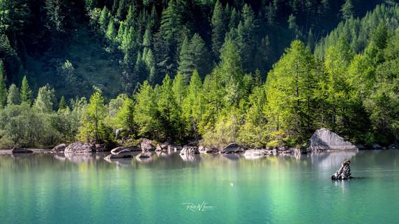 Derborence Lac Halbinsel mit Morgenlicht_Z624733-Signet-web.jpg