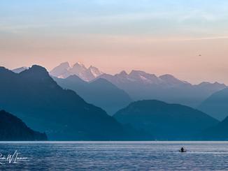 Abendstimmung mit Ruderer Küssnachter Seebecken blaue Stunde rosa_DSC5643-Signet-web.jpg