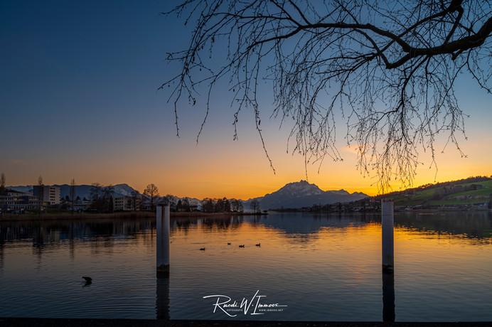 Küssnacht, Abendlicht, Seepromenade