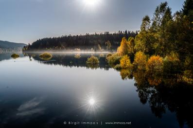Schluchsee-spiegelung-goldener-Herbst-vo