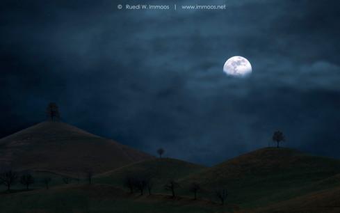 Drumlins-Mond-_DSC2826-Signet-web.jpg