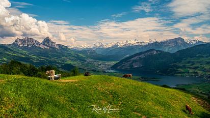 Aussicht vom Rossberg hinunter nach Schwyz und zu den Mythen