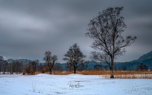 Winterlandschaft, Schutt Steinen