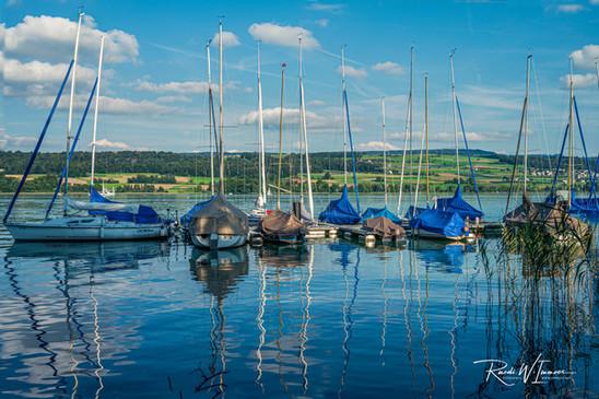 Masten Segelschiffe in der Spiegelung Hallwilersee 3 Fotos-2_Z625339-6a-Signet-web.jpg
