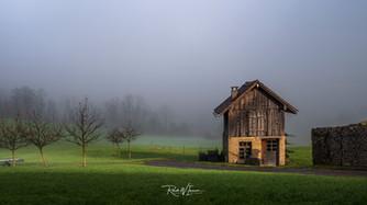 Hexenhäuschen-Lauerz-Nebelmorgen-mid-So