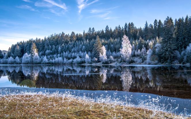 Schwarzwald-Schluchsee-Spiegelung-Raurei