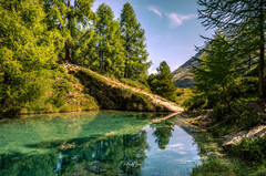 Lac bleu hinten Idylle Wald blaugrün_Z624670-Signet-web.jpg