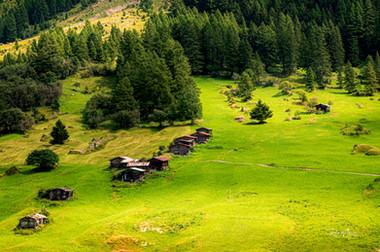 Alpweide mit Hüttchen im Lötschental grün gelb_Z624865-Signet-web.jpg