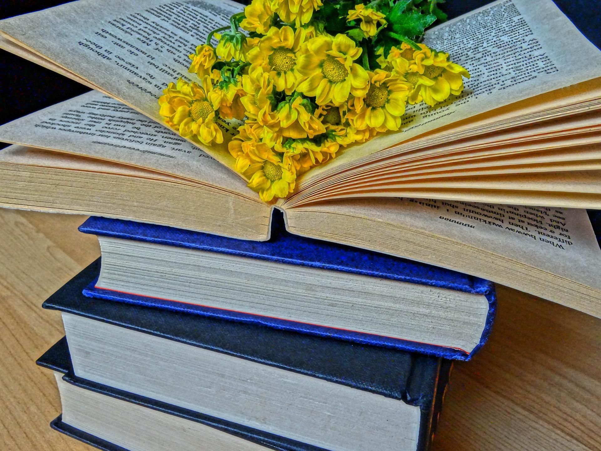 books-2565571_1920