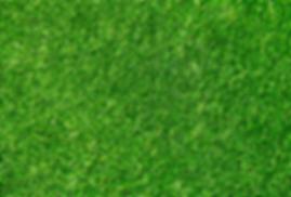 seamless-green-grass-texture.png