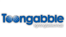 toongabbie logo.png