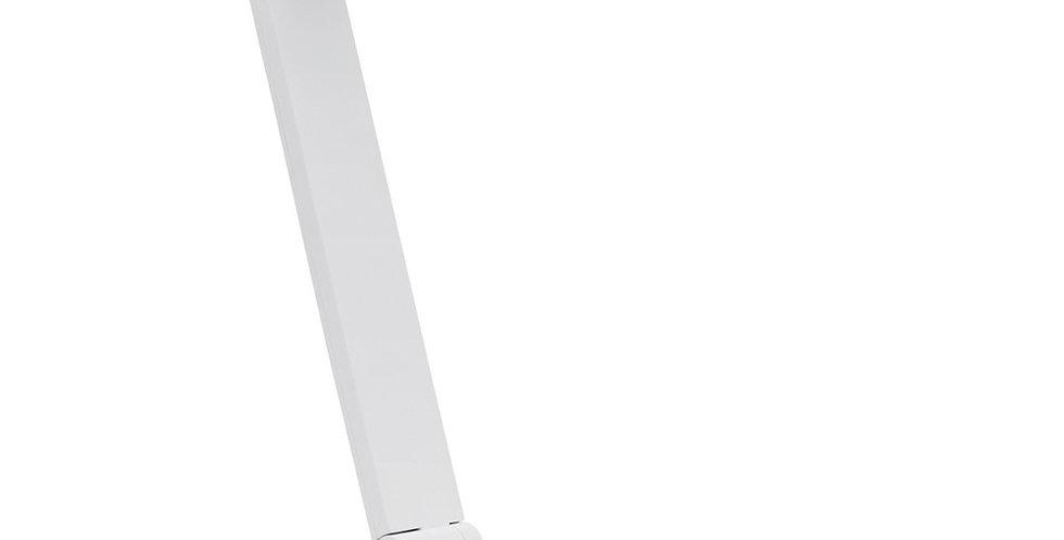 01 DEXTER Desk Lamp